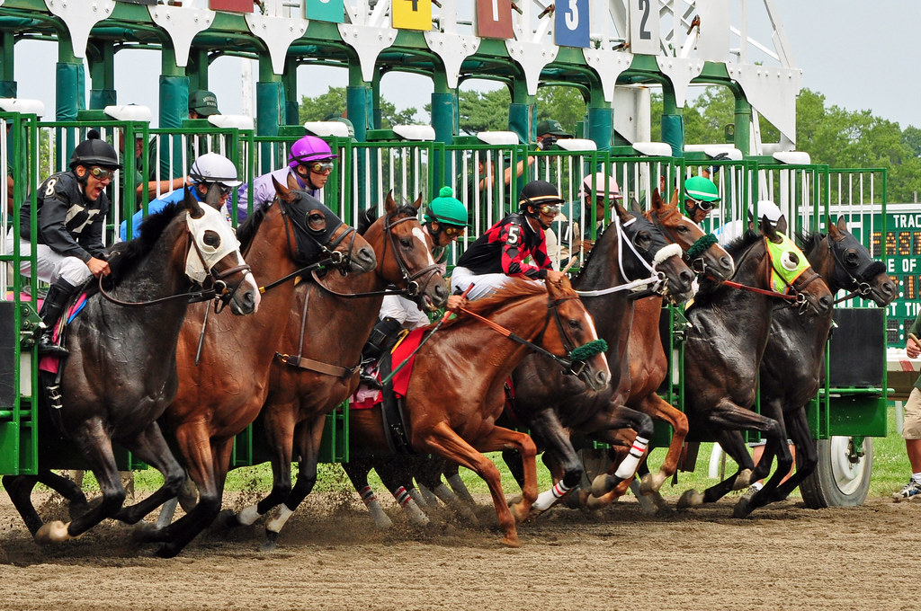 monmouth park racetrack review